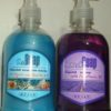 Sapun lichid Refan - 500 ml 2